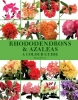 Cox, Kenneth, Rhododendrons and Azaleas
