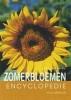 Nico Vermeulen, Geïllustreerde Zomerbloemen encyclopedie