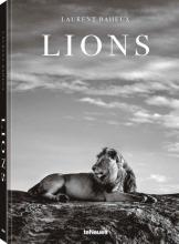 ,Laurent Baheux Lions