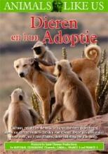 Deze documentaire bestudeert elk geval apart omdat elk adoptief gedrag onafhankelijk geëvolueerd is, met zijn eigen  patroon, eigen voordelen en zelfs… zijn eigen nadelen.