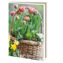 Lmc370 , Notecards 10 stuks 13x18 bloemen in potten modeste herwig