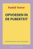 Rudolf Steiner, Opvoeden in de puberteit