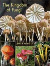Jens H. Petersen The Kingdom of Fungi