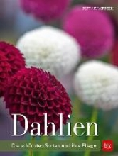Verbeek, Bettina Dahlien