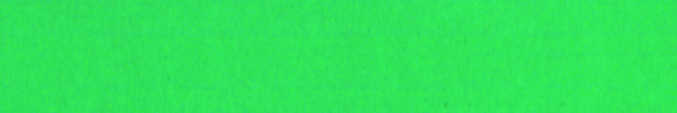 , Magneetstrip Legamaster 10x300mm groen