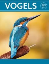 Dan Brown , Rebo mini guide - Vogels
