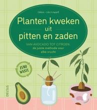 , Planten kweken uit pitten en zaden