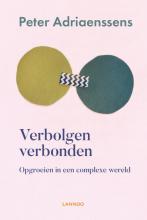 Peter Adriaenssens , Verbolgen verbonden