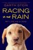Stein, Garth,Racing in the Rain