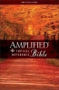 Zondervan Publishing,Amplified Topical Reference Bible