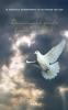 Edgar  Kruijer ,De overweldigende liefde van God