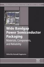 Suganuma, Katsuaki Wide Bandgap Power Semiconductor Packaging
