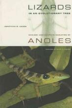 Jonathan B. Losos Lizards in an Evolutionary Tree