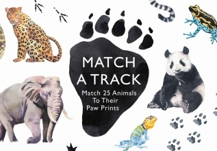 , Match a Track