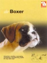 , Boxer