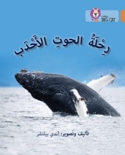 Andy Belcher Journey of Humpback Whales
