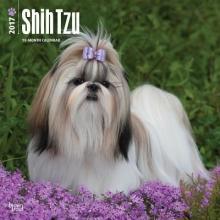Shih Tzu 2017 Calendar