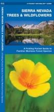 Kavanagh, James Sierra Nevada Trees & Wildflowers