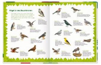 Oftring, Bärbel Das groe Waldbuch
