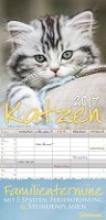 Katzen Familientermine 2017 Familienplaner