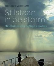 Monique Veerkamp , Stilstaan in de storm