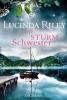 Riley, Lucinda,Die Sturmschwester 2