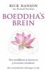 Rick Hanson, ,Boeddha`s brein