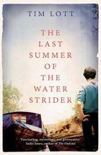 Lott, Tim Last Summer of the Water Strider