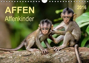 Roder, Peter Affen - Affenkinder (Wandkalender 2016 DIN A4 quer)