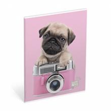 , Schrift studio pets a5 gelijnd 3-pack