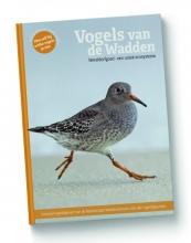 Roy de Haas Marc Plomp, Vogels van de Wadden