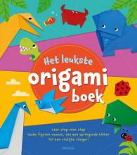 , Het leukste origamiboek