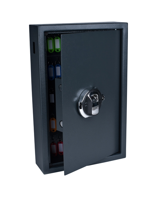 ,Sleutelkast Pavo high security met fingerprintslot 50 haken 550x400x100mm