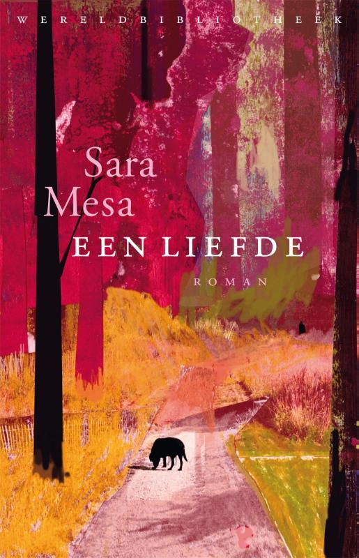 Sara Mesa,Een liefde