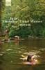 Orringer, Julie,Unter Wasser atmen