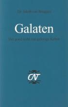 Jacob van Bruggen , Galaten