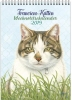 , Franciens Kitten WEEKnotitiekalender Kater