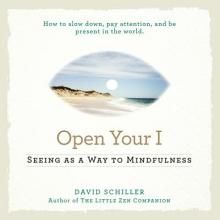 David Schiller See Your Way to Mindfulness