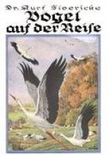 Floericke, Kurt Vögel auf der Reise
