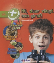 Tijl Rood Cëcile Bolwerk  Anneriek van Heugten  Linda Laurens, Pluswerkboek E6