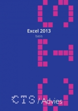 Charles Scheublin , Excel 2013 Basis