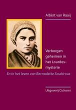 Albèrt van Raaij , Verborgen geheimen in het Lourdes-mysterie