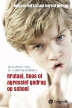 Walter  Matthys, Christine  Boersma Brutaal, boos en agressief gedrag op school