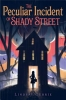 Currie, Lindsay,The Peculiar Incident on Shady Street
