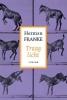 Herman Franke,Traag licht