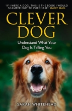 Sarah Whitehead Clever Dog