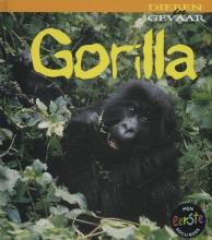 Rod  Theodorou Gorilla
