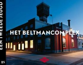 Ronald  Stenvert Het Beltmancomplex