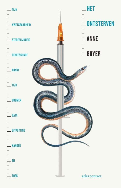 Anne Boyer,Het ontsterven