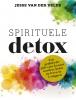 Jesse van der Velde,Spirituele detox